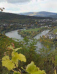 Mosel-saar-ruwer Mosel Wine Germany